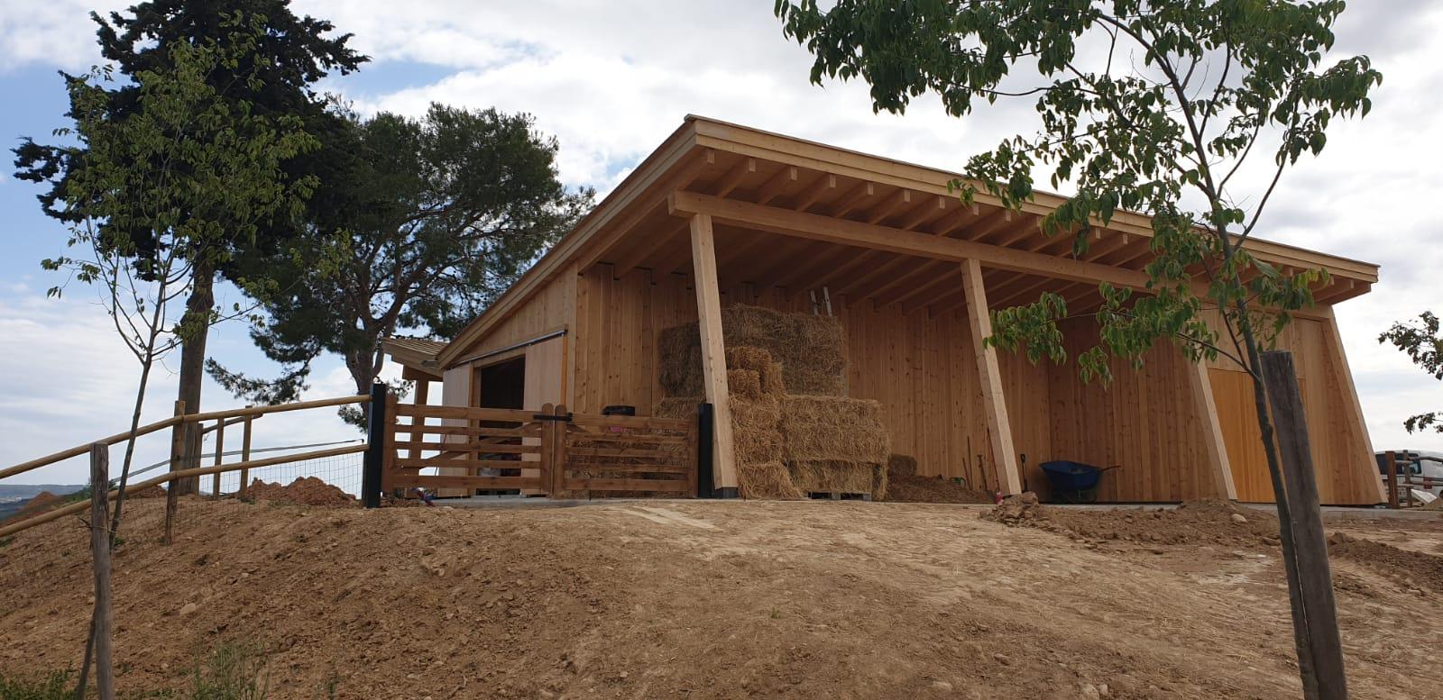 Single-family house + farm building